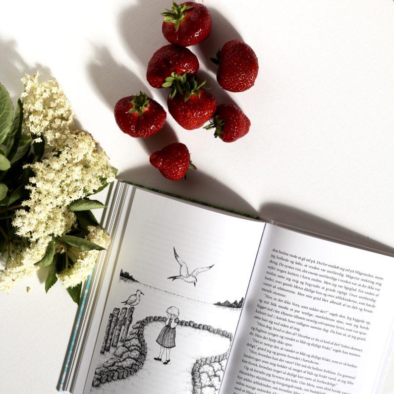 En sødmefuld sommer i Mumleby, Elvira Fragola, Bogoplevelsen