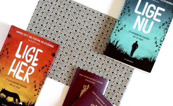 Lige her, Lige nu, Bogoplevelsen, International Children's literature Hay Festival - Aarhus 39