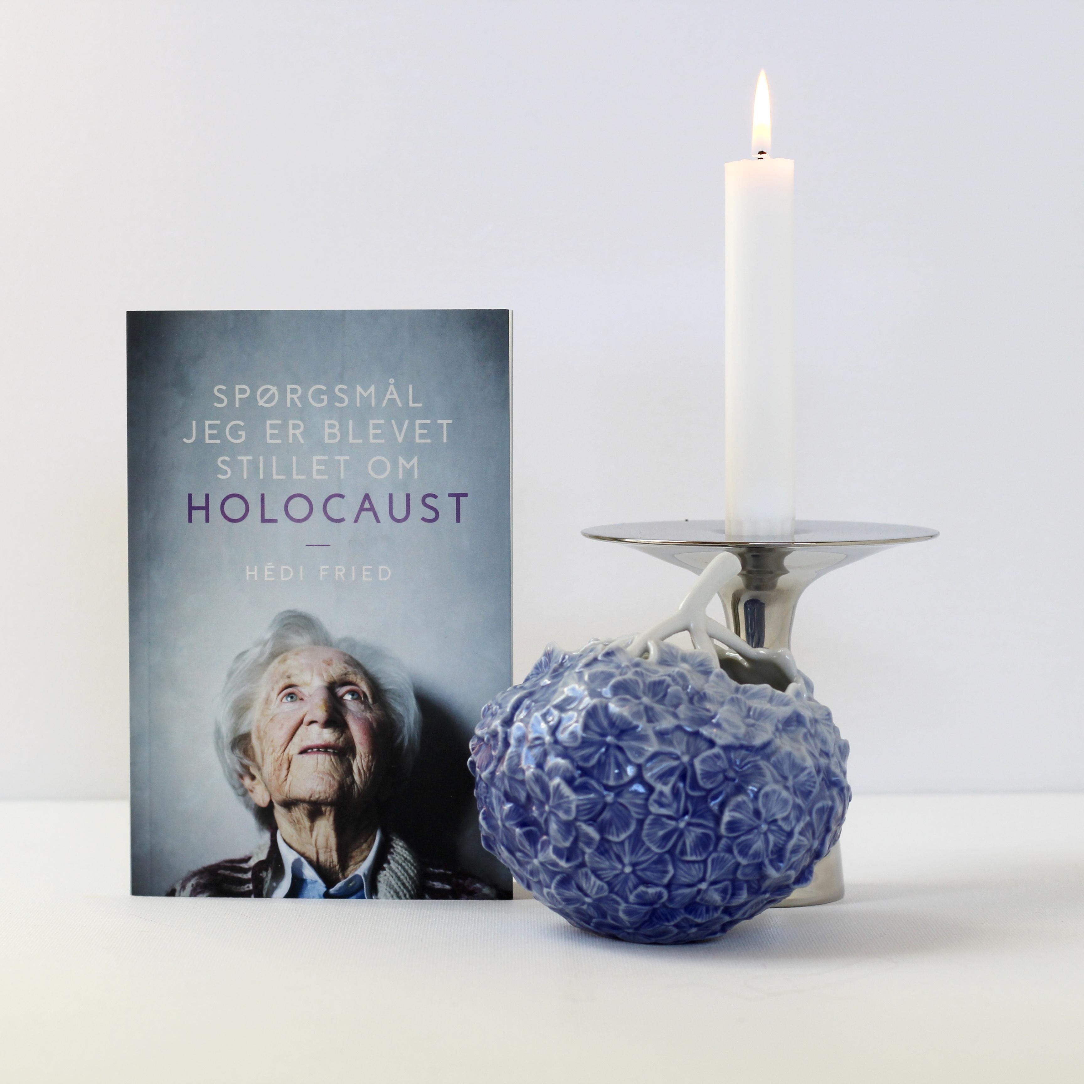 Spørgsmål jeg er blevet stillet om holocaust, Hedi Fried, Bogoplevelsen