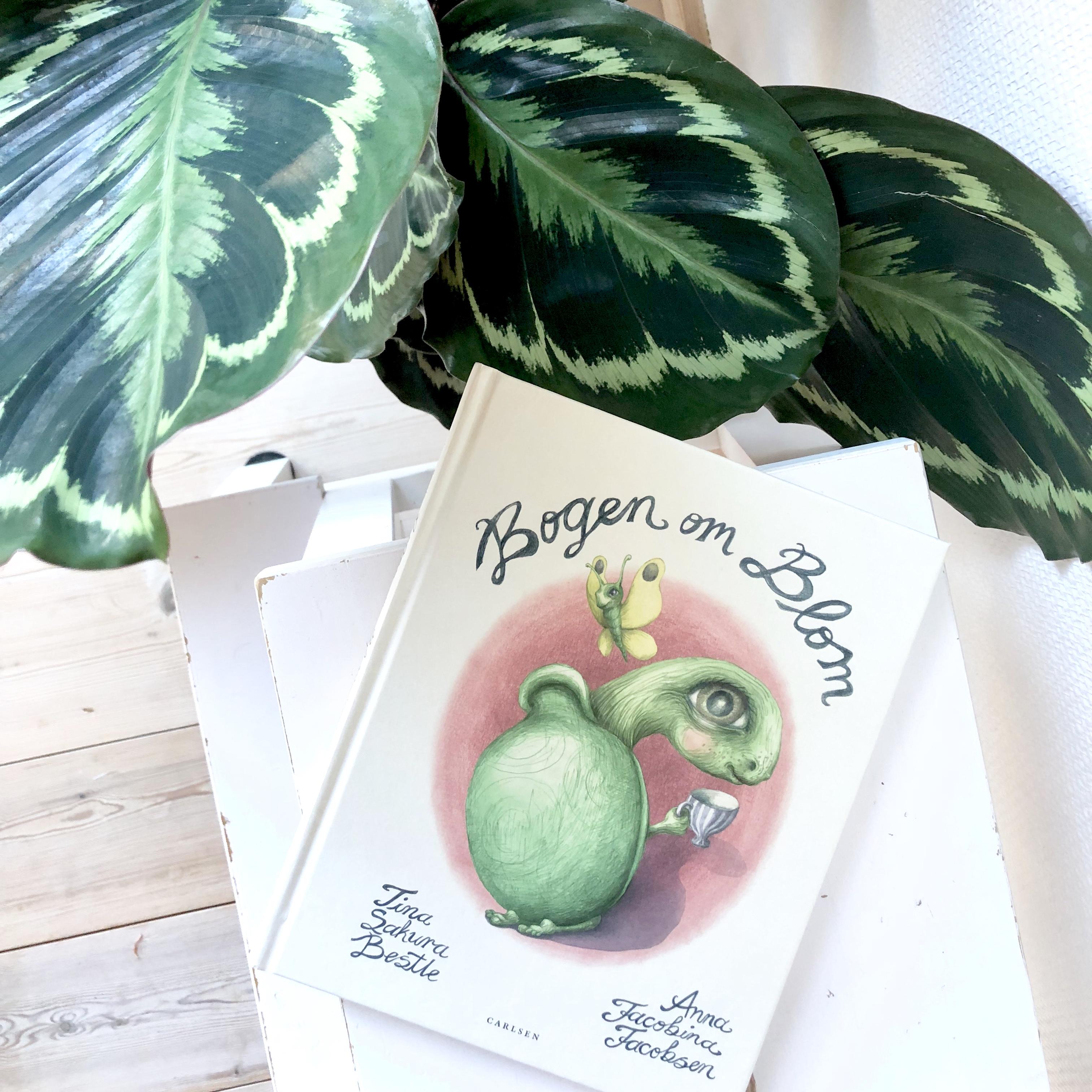 Bogen om Blom, Tina Sakura Bestle, Anna Jacobina Jacobsen, Bogoplevelsen